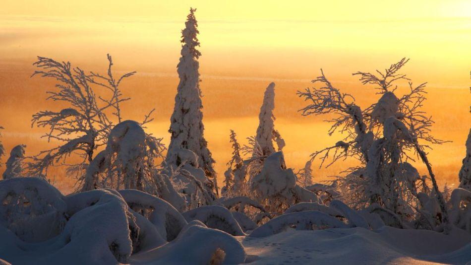 Terres_de_glace